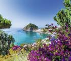 Combiné de 8 jours Naples et Ischia avec séjour dans des petits hôtels de famille
