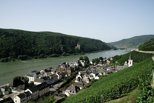 Rheinhôtel Lamm